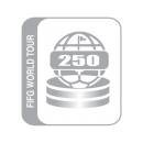 250FIFG